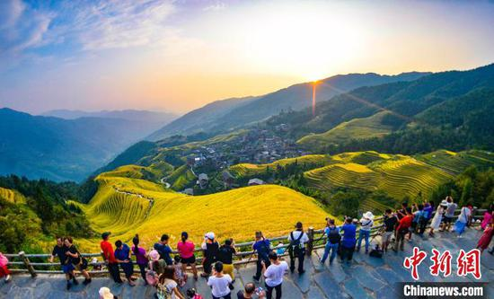 图为游客在桂林市龙胜各族自治县龙脊梯田观光游览。 潘志祥 摄
