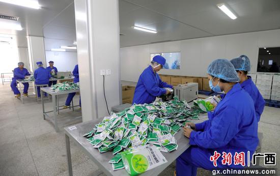 11月12日,在廣西柳州長安制藥有限公司生產車間,工人們在勞作。覃慶和  攝