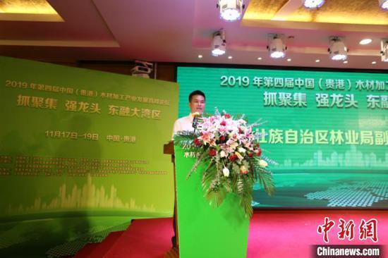 广西壮族自治区林业局副局长陆志星致辞 林浩 摄