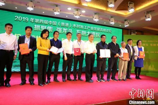 图为《桉木旋切单板》团体标准证书颁发仪式 林浩 摄