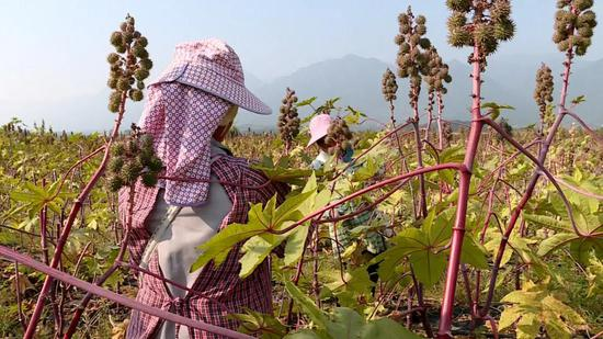 http://www.jienengcc.cn/hongguanjingji/156647.html