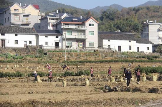 浙江龙游守住绿水青山实现生态富民