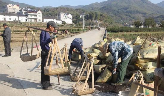 浙江龙游守住绿水青山实现生态富民 龙游宣传部 供图