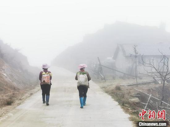 11月28日,村民走在白茫茫的摩天岭牧场里。 李义成 摄