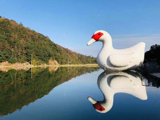 河面上漂浮着巨大的番鸭气模 主办方供图