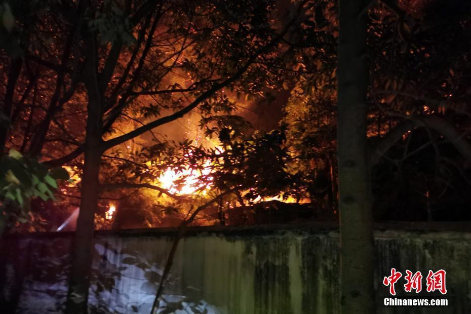 广西梧州山火复燃 武警官兵紧急驰援
