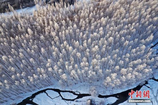 新疆博爾塔拉河谷現霧淞