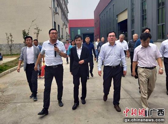 """广西贵港""""借木生财""""壮大木材加工产业集群"""