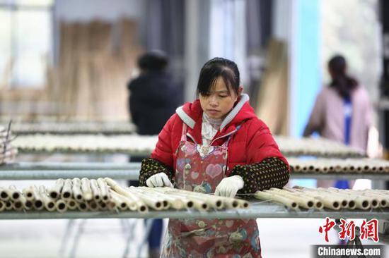 工人正在筛选竹子。 朱柳融 摄