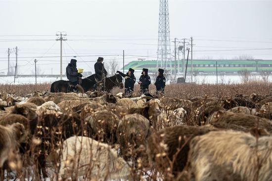乌鲁木齐铁警为牧民保驾护航