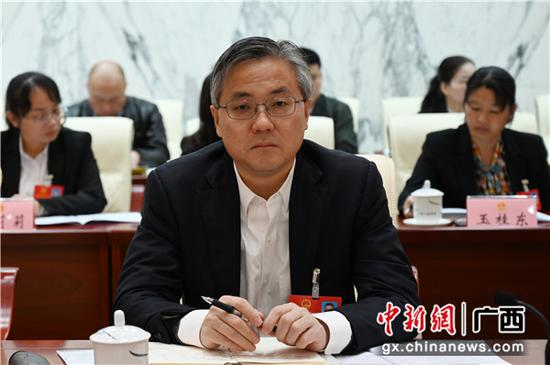 南宁市市长周红波参加南宁代表团审议政府工作报告。中新社记者 杨志雄 摄