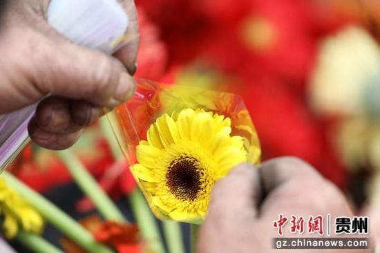 贵州省赤水市宝源乡联奉村村民在包装鲜花。 王长育 摄