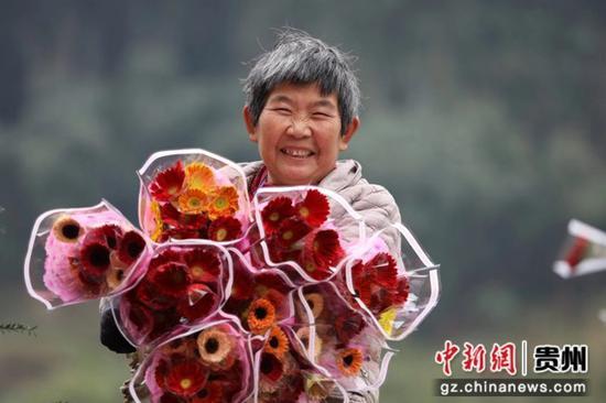 贵州省赤水市宝源乡联奉村村民在展示包装好的鲜花。 王长育 摄