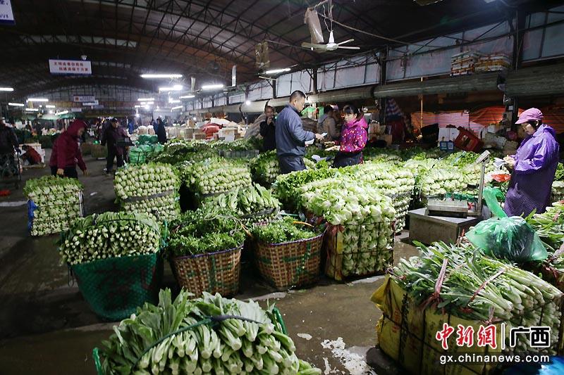 """广西钦州保障节日蔬菜供应丰富""""菜篮子"""""""