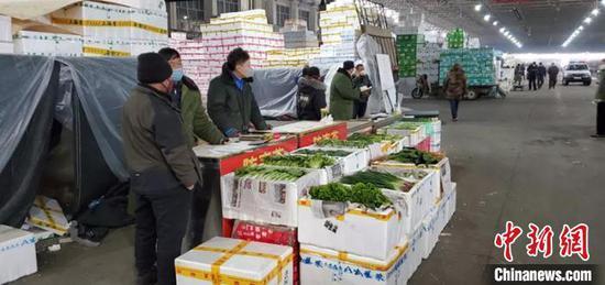 """探访乌鲁木齐市""""菜篮子""""基地:蔬菜供应情况良好"""