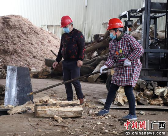 广西融水华林木业有限公司的工人们在各自岗位上进行劳作。