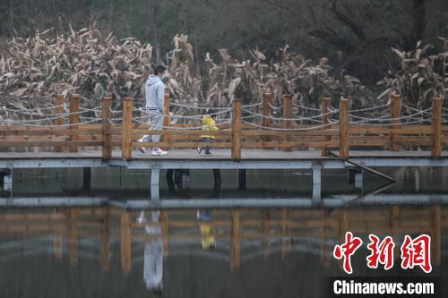2月22日,贵阳观山湖公园,一位父亲带着孩子在公园内游玩。 瞿宏伦 摄