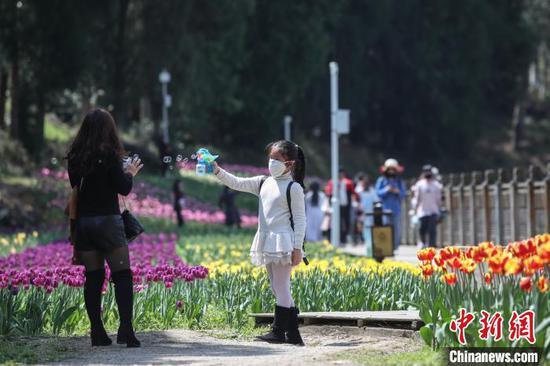 市民在龙架山国家森林公园内游玩。 瞿宏伦 摄