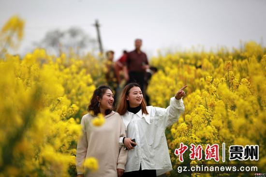 2020年3月18日,游客在四川省毕节市黔西县洪水镇解放村观赏油菜花。史开心 摄