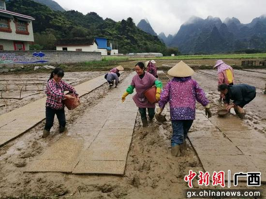 http://image.cns.com.cn/xinjiang_editor/transform/20200324/i7SM-fzusfss0789653.jpg