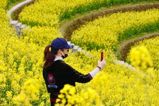 游客在花丛中拍照。  钱晨菲 摄