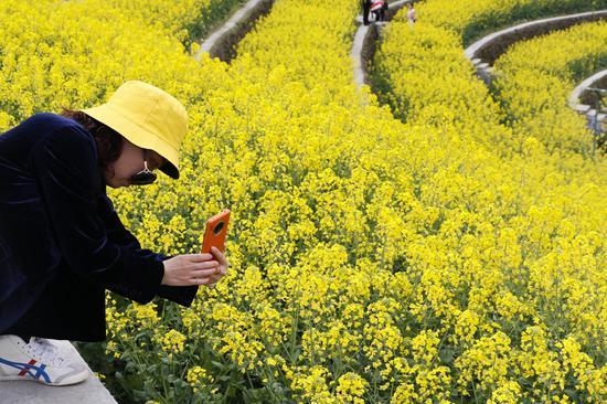 游客在油菜花丛中拍照。  钱晨菲 摄