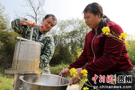 贵州省毕节市黔西县雨朵镇登高社区科技副主任方平在花间指导农户采蜜。