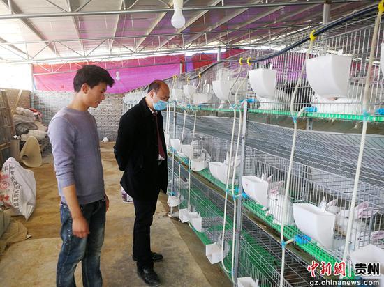 """黄平农商银行一碗水支行10万元""""复工复产贷""""支持水淹塘村韩家院组向治路发展肉兔养殖"""