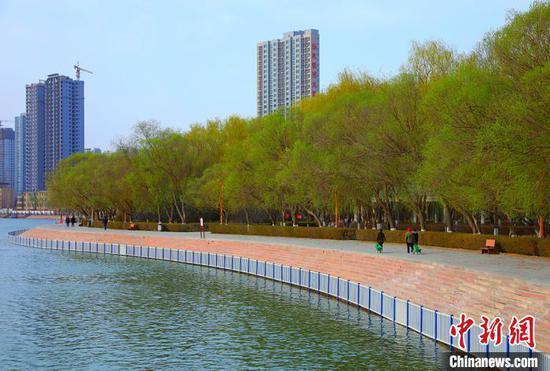 新疆库尔勒:花红柳绿 民众踏春赏景