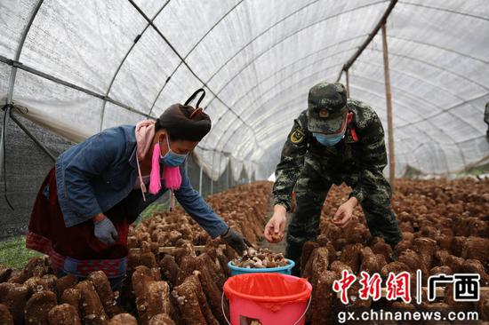 广西柳州武警官兵助力扶贫产业复工复产