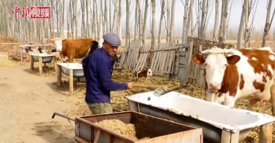新疆村民艾尔肯的脱贫路:靠自己的双手发展养殖业
