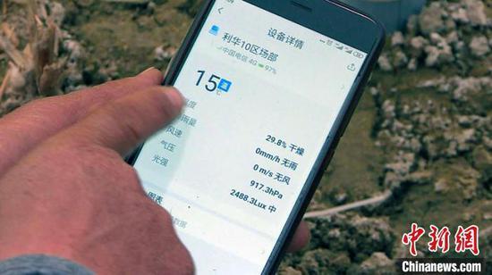 無人機探測 技術人員通過手機動態監測土地狀況 引導科技種田。 倪菁菁 攝