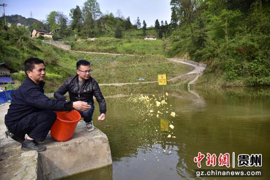 貴州民大派駐鎮遠縣報京鄉屯上村第一書記楊洋指導群眾喂魚。