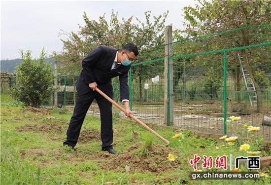 三江南站職工在攏土種植瓜豆苗。李潔 攝
