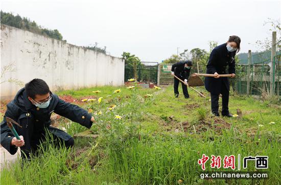 三江南站職工在清理小菜園的雜草枯枝。李潔 攝