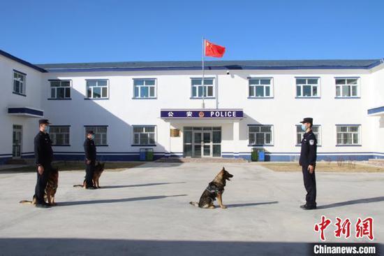 """新疆∩阿勒泰边境检查站开展""""警犬""""训练"""