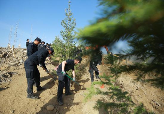 新疆阿勒泰民警为戈壁增添一抹绿