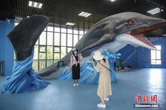 游客在鱼龙展示馆内和雕塑合影。中新社记者 瞿宏伦 摄