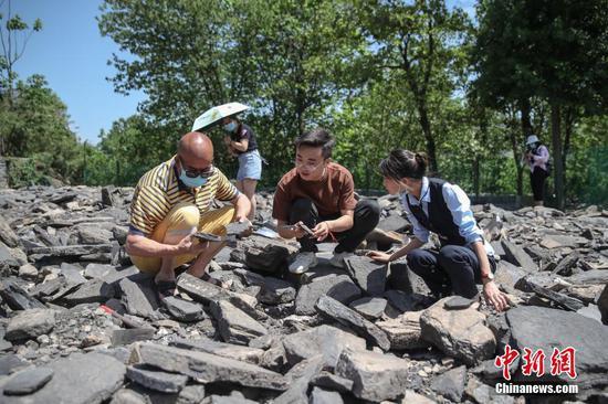 游客在挖掘体验区体验化石挖掘。中新社记者 瞿宏伦 摄