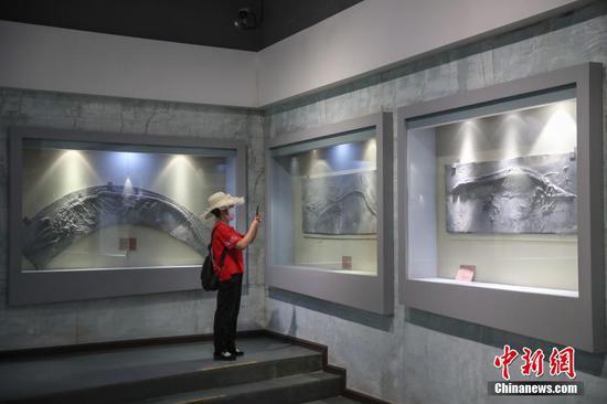 游客在博物馆内参观展出的化石。中新社记者 瞿宏伦 摄