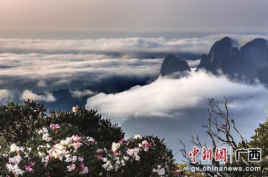 资料图:大美圣堂山。陆秀延  摄