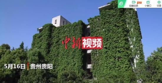 """爬山(shan)虎""""圍樓""""28年 9層樓高(gao)圖書館如""""綠(lv)色瀑布(bu)"""""""