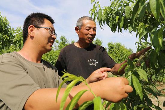 """6连""""两委""""杨玉鹏给罗鹏生进行桃树种植技术指导"""