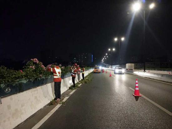 图为杭州高架上深夜作业的养护工人。 杭州市园文局供图