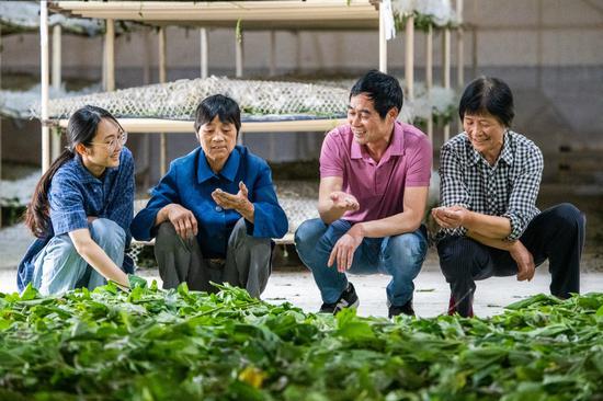 蚕农在讨论养殖经验  沈勇强 摄