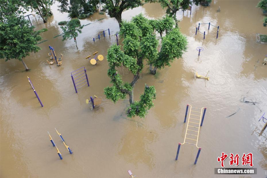 一周之內3次超警洪峰過境廣西柳州