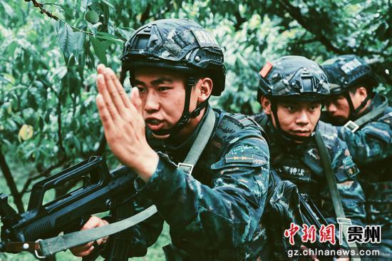 武警贵阳支队特战队员在山林地搜索暴恐分子训练 蒋林岫 摄