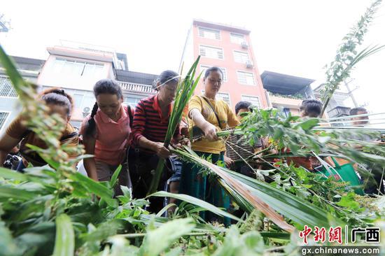 广西融安贫困农民采集中草药增加收入助脱贫