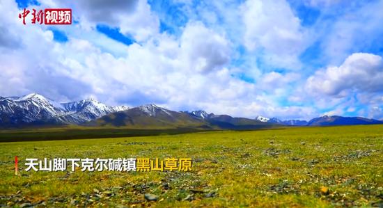 新疆托克逊县黑山草原:雪山与绿野交相辉映