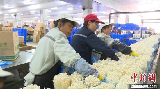 图为搬迁民众在安置点就业。威宁县融媒体中心供图